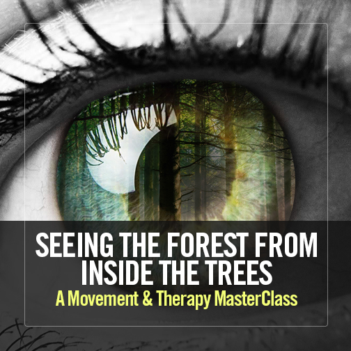 Seeing the Forest from Inside the Trees: A Movement & Therapy MasterClass