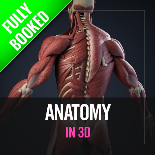 Anatomy in 3Dimensions