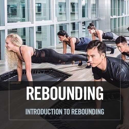 Introduction to Rebounding