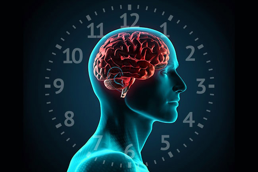 CIRCADIAN RHYTHMS: HOW TIME OF DAY AFFECTS QUALITY OF TRAINING: