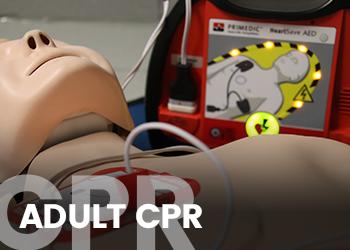 Link-CPR