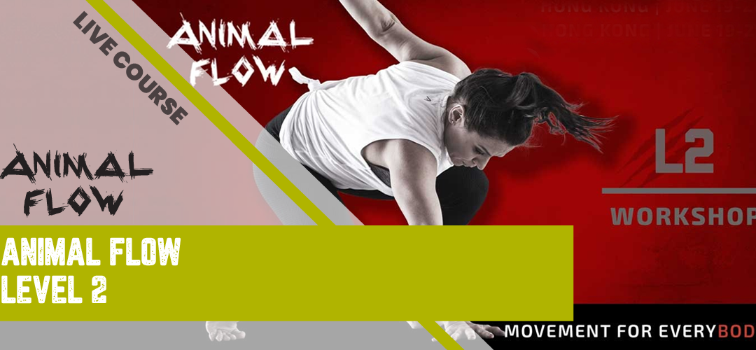 Animal Flow Level 2 Instructor Certification