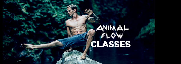 Menu-class-animalflow